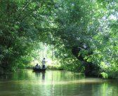 Vendée : les 5 sites naturels remarquables