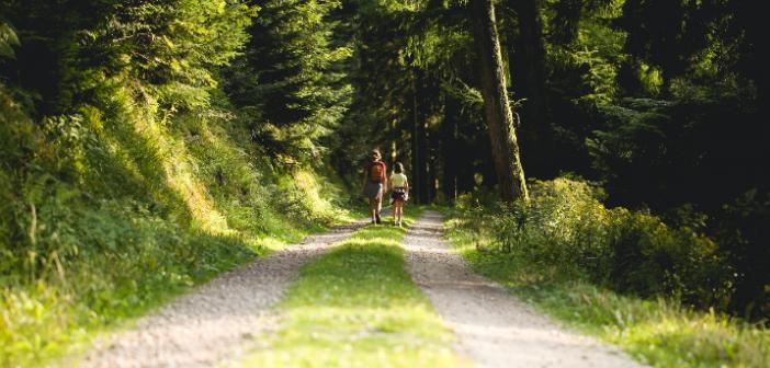 Où faire de la randonnée en Charente-Maritime ?